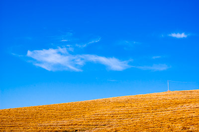 Threshed fields in the hills around Senigallia
