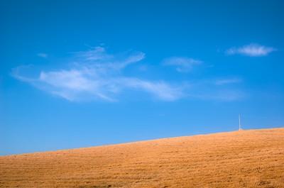 Threshed fields in the hills around Senigallia