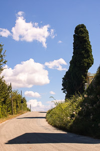 Road to the hill