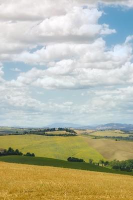 Roncitelli's hills