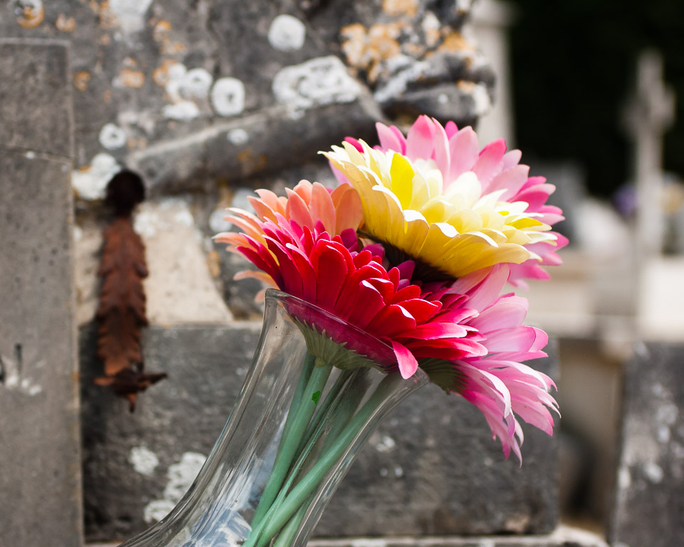 Flowers in the Glass Pot
