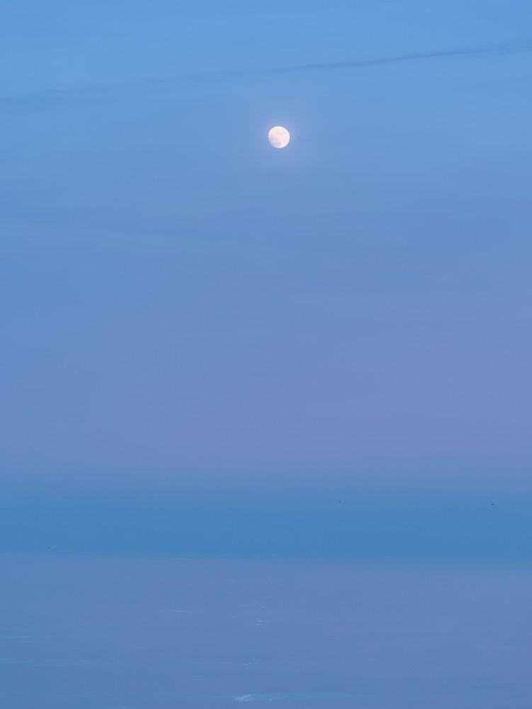 Moon at dusk